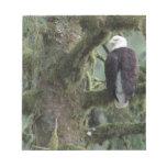 U.S.A., Alaska, Southeast Alaska Bald eagle Notepad
