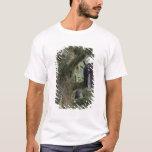 U.S.A., Alaska, Southeast Alaska Bald eagle T-Shirt