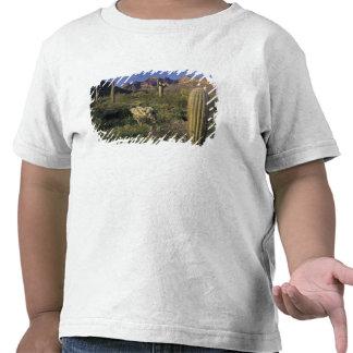 U.S.A., Arizona, Organ Pipe National Monument. T Shirt