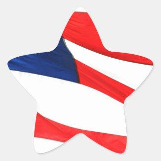 U.S.A. Flag Star Sticker