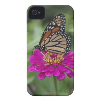 U.S.A., Massachusetts, Boylston, Tower Hill Case-Mate iPhone 4 Case