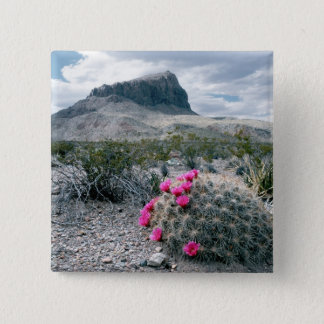 U.S.A., Texas, Big Bend National Park. Blooming 15 Cm Square Badge