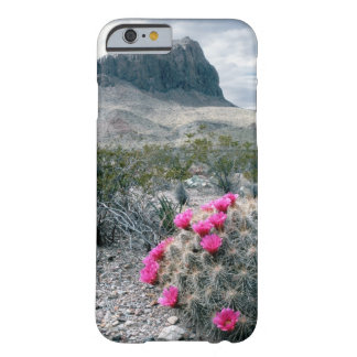 U.S.A., Texas, Big Bend National Park. Blooming Barely There iPhone 6 Case
