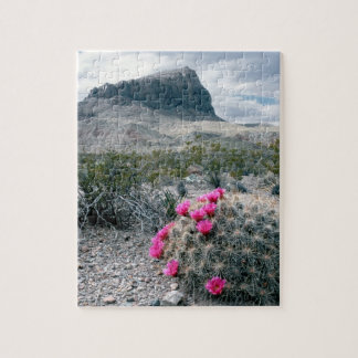 U.S.A., Texas, Big Bend National Park. Blooming Jigsaw Puzzle