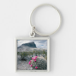 U.S.A., Texas, Big Bend National Park. Blooming Key Chain