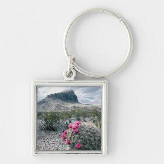 U.S.A., Texas, Big Bend National Park. Blooming Key Chain