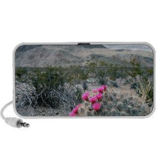 U.S.A., Texas, Big Bend National Park. Blooming iPod Speaker