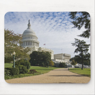 U. S. Capital Mouse Mat