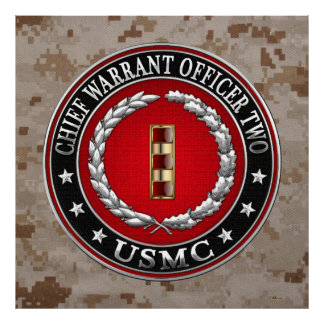 U.S. Marines: Chief Warrant Two (USMC CWO-2) [3D] Poster