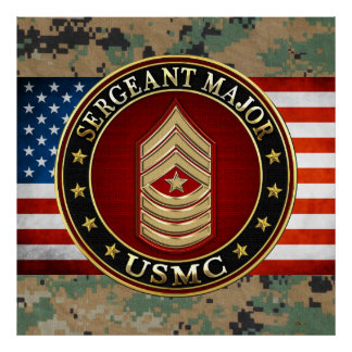 U.S. Marines: Sergeant Major (USMC SgtMaj) [3D] Poster