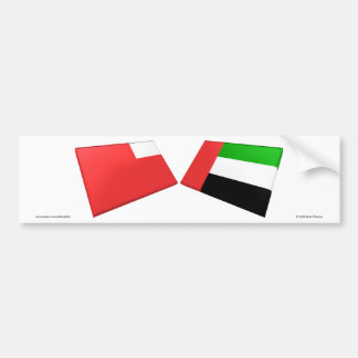 UAE & Abu Dhabi Flag Tiles Car Bumper Sticker