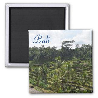 Ubud Bali Square Magnet