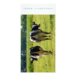 Udder Viewpoints Picture Card