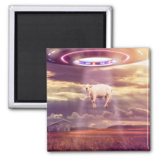 UFO Cow Abduction Encounter Poster Square Magnet