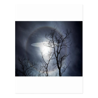 UFO with silhouetted tree branches Postcard