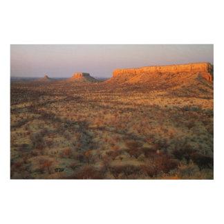 Ugab Terraces, Khorixas District, Namibia Wood Wall Decor