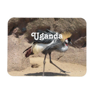 Uganda Crested Crane Rectangular Photo Magnet