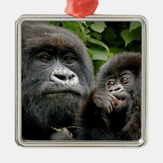 Ugandan Gorillas Silver-Colored Square Decoration