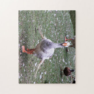 ugly duckling jigsaw puzzle