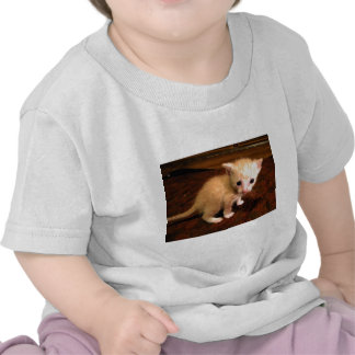 Ugly Duckling T-shirts