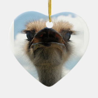 Ugly Man Ostrich Christmas Ornament