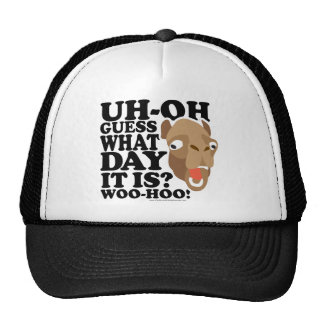 Uh Oh. Guess What Day It Is. Woo-Hoo Hats