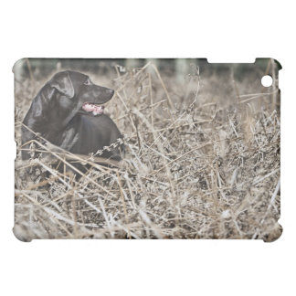 UK, England, Suffolk, Thetford Forest, Black 2 Cover For The iPad Mini