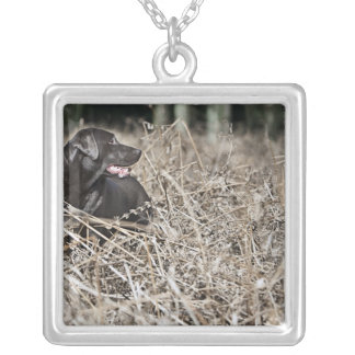 UK, England, Suffolk, Thetford Forest, Black 2 Silver Plated Necklace