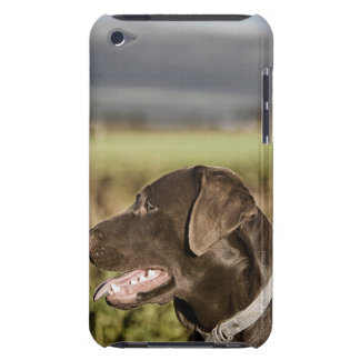 UK, England, Suffolk, Thetford Forest, Profile Case-Mate iPod Touch Case