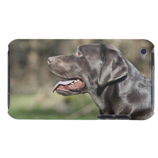 UK, England, Suffolk, Thetford Forest, Profile iPod Touch Cases