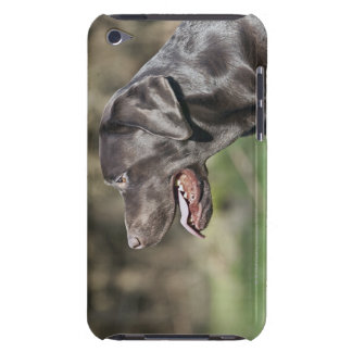 UK, England, Suffolk, Thetford Forest, Profile iPod Touch Cover