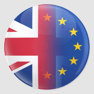 UK – EU membership referendum 2016 Classic Round Sticker