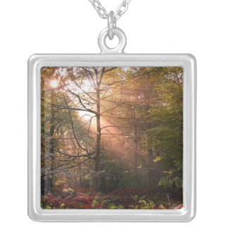 UK. Forest of Dean. Sunbeam penetrating a Silver Plated Necklace