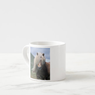 UK, Scotland, Shetland Islands, Shetland pony