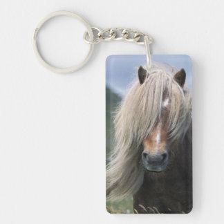 UK, Scotland, Shetland Islands, Shetland pony Double-Sided Rectangular Acrylic Key Ring