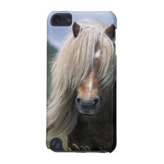 UK, Scotland, Shetland Islands, Shetland pony iPod Touch (5th Generation) Cases