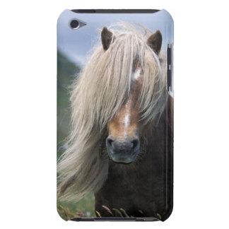 UK, Scotland, Shetland Islands, Shetland pony iPod Touch Covers