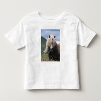 UK, Scotland, Shetland Islands, Shetland pony Toddler T-Shirt