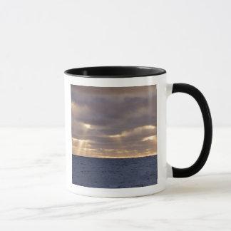 UK Territory, South Georgia Island, Scotia Sea. Mug