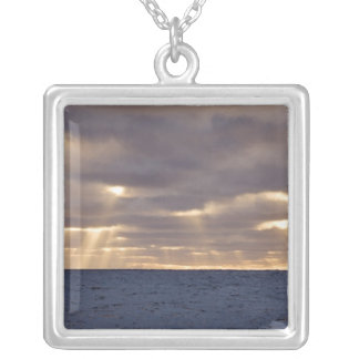 UK Territory, South Georgia Island, Scotia Sea. Silver Plated Necklace