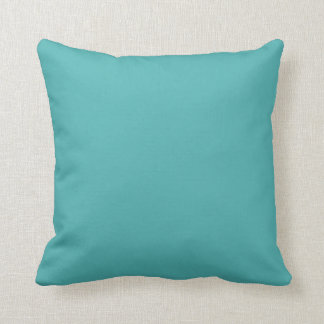 Ulania's Tilly Coordianting Solid Throw Pillow