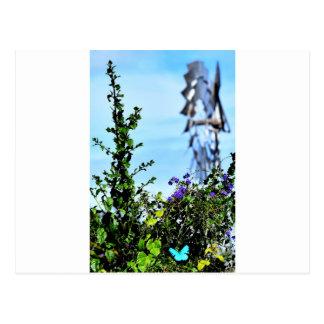 ULYSSES BLUE BUTTERFLY & WINDMILL AUSTRALIA POSTCARD