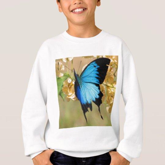 Ulysses Butterfly Sweatshirt