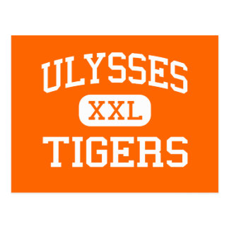 Ulysses - Tigers - High School - Ulysses Kansas Postcard