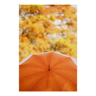 Umbrella and Autumn Colors Poster