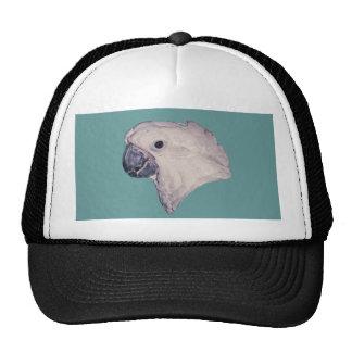 Umbrella Cockatoo Hats
