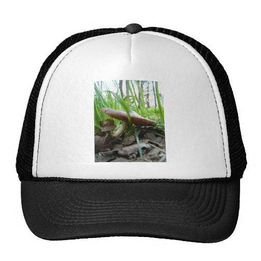 Umbrella Top Trucker Hat