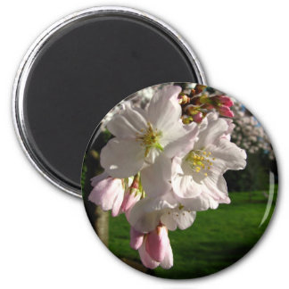 Un Opened Blossom 6 Cm Round Magnet