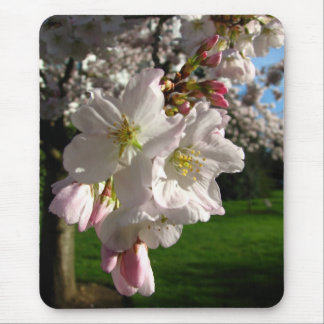 Un Opened Blossom Mouse Mat