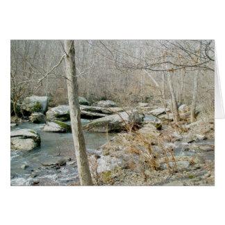Unami Creek #1 Note Card
